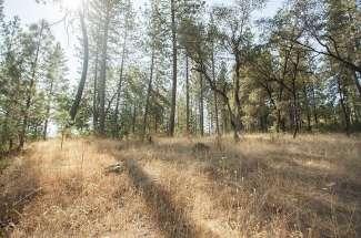 17010 Winchester Club Drive – Meadow Vista