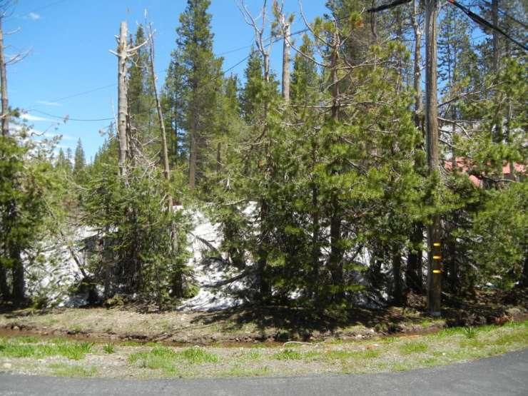 6504 Spruce Road, Serene Lakes